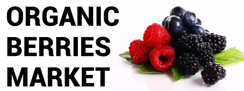 Organic Berries Market