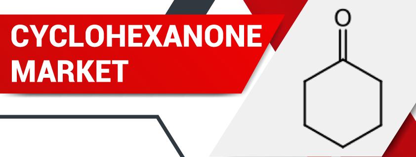 Cyclohexanone Market